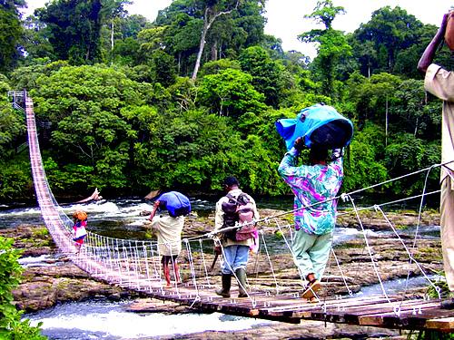 Porteurs traversant le pont d'acces au parc national de KORUP dans la region sud ouest du Cameroun