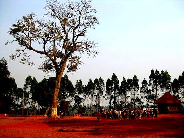 RITES TRADITIONNELS DANS UNE CHEFFERIE BAMILEKE DE L OUEST CAMEROUN