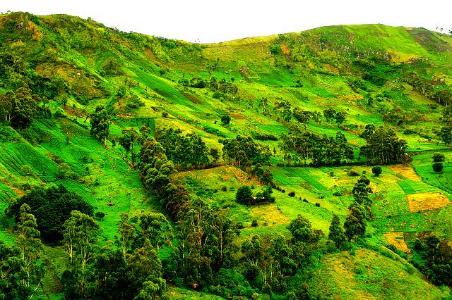 paysage de la region de BAMBOUTOS dans l ouest camerounais l un des plus beaux paysages du Cameroun