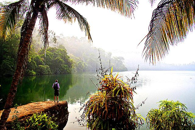 UNE VUE DU Lac Barombi Mbo DANS LA REGION DU LITTORAL AU CAMEROUN Le lac Barombi Mbo est un lac de cratère situé au Cameroun. Altitude : 300 m Superficie : 5 km² Profondeur moyenne : 69 m