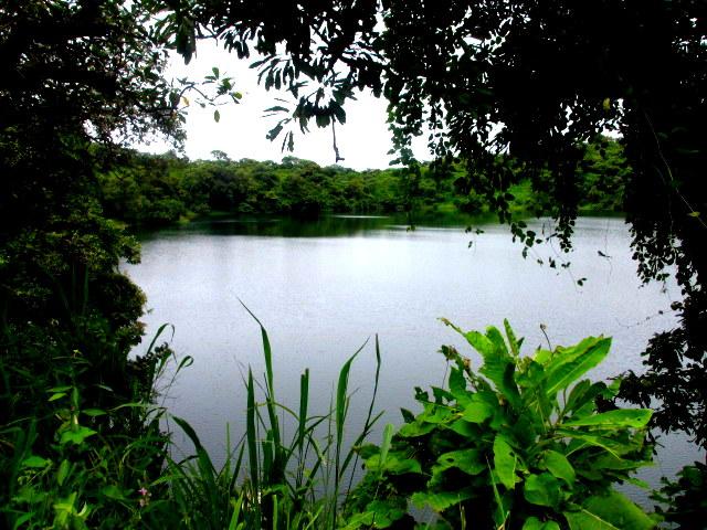 vue du lac du ranch de Ngaoundaba Adamaoua Cameroun Septembre 2013